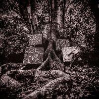 Cover Kamasi Washington - Harmony Of Difference [EP]